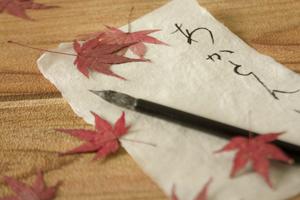 おうちで楽しむ紅葉の和紙づくり