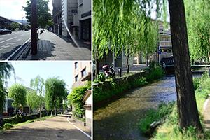 旅ドキ番外編:京都東山区・五条通と僕のナンテコトナイ休日散策