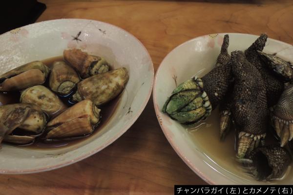 FoodBangai_09_05