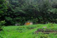 旅ドキ番外編/第1回:沖縄やんばるの自然の中で、パーマカルチャーという生き方に触れる旅