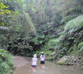 旅ドキ番外編/第2回:沖縄やんばるの自然の中で、パーマカルチャーという生き方に触れる旅